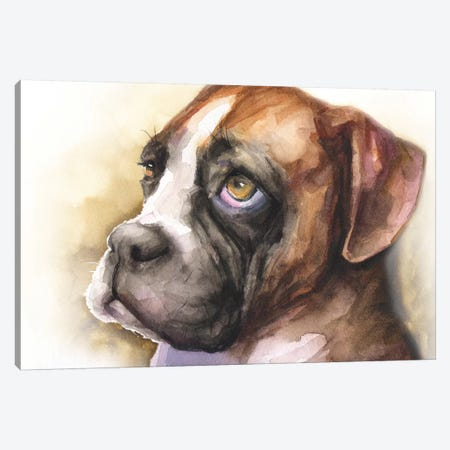 Boxer Puppy Light Background Canvas Print #GDY243} by George Dyachenko Canvas Artwork