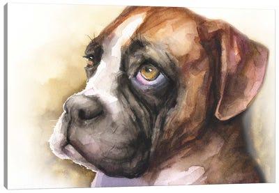 Boxer Puppy Light Background Canvas Art Print