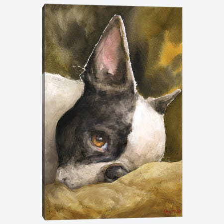 Boston Terrier With Background Canvas Print #GDY245} by George Dyachenko Canvas Art Print