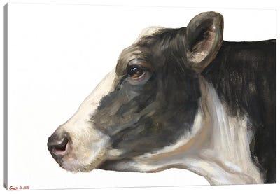 Cow White Background Canvas Art Print