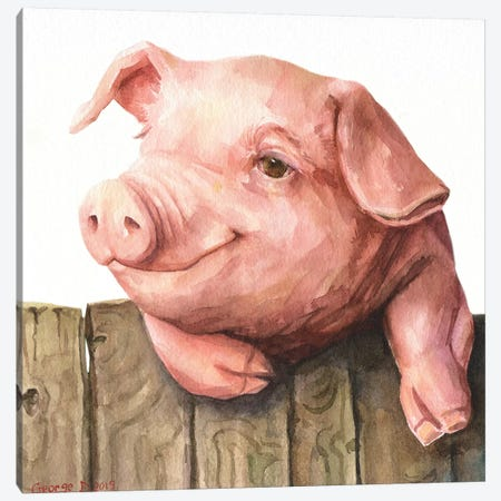 Little Piggy White Background Canvas Print #GDY253} by George Dyachenko Canvas Art Print