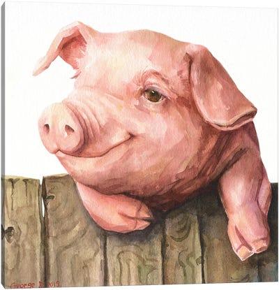 Little Piggy White Background Canvas Art Print