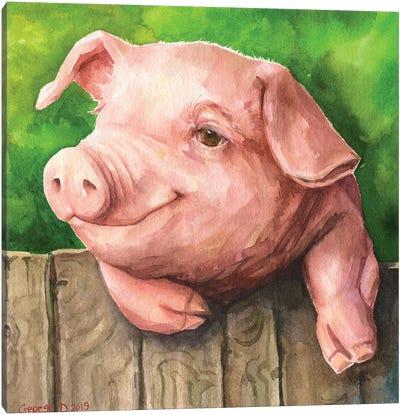 Little Piggy With Background Canvas Art Print