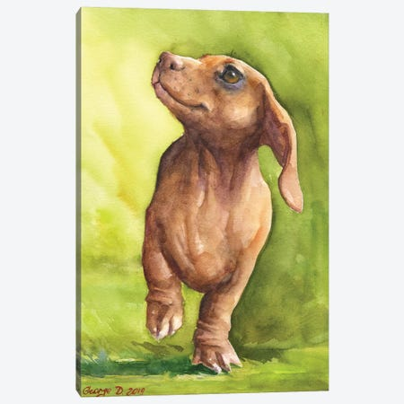 Red Dachshund With Background Canvas Print #GDY258} by George Dyachenko Art Print