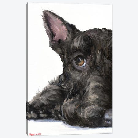 Scottish Terrier Canvas Print #GDY260} by George Dyachenko Canvas Art