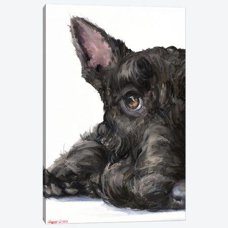 Scottish Terrier Canvas Print #GDY260} by George Dyachenko Canvas Art