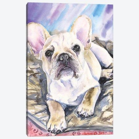 Cream French Bulldog Puppy Canvas Print #GDY266} by George Dyachenko Art Print