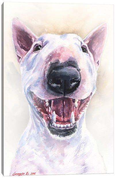 Happy Bull Terrier Canvas Art Print