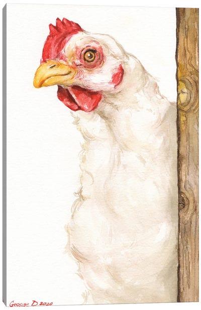 Chicken II Canvas Art Print