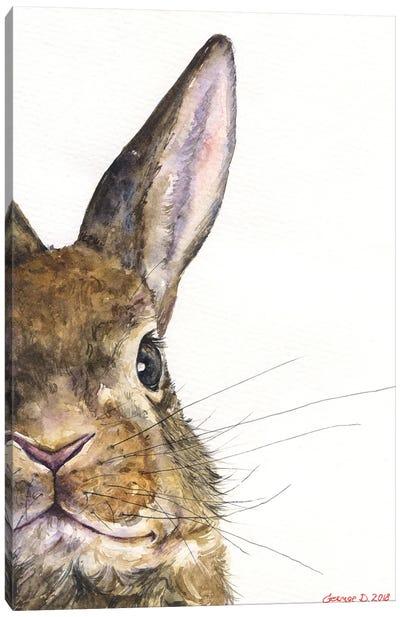 Bunny Canvas Art Print