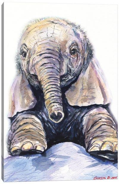 Elephant baby Canvas Art Print
