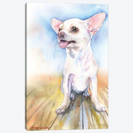 Chihuahua white Canvas Print #GDY279} by George Dyachenko Canvas Art Print