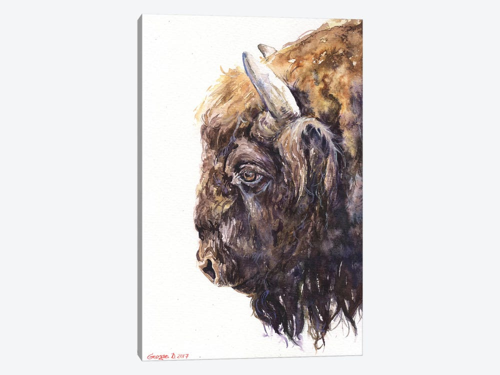 Buffalo by George Dyachenko 1-piece Art Print