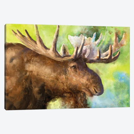 Moose Canvas Print #GDY280} by George Dyachenko Canvas Artwork