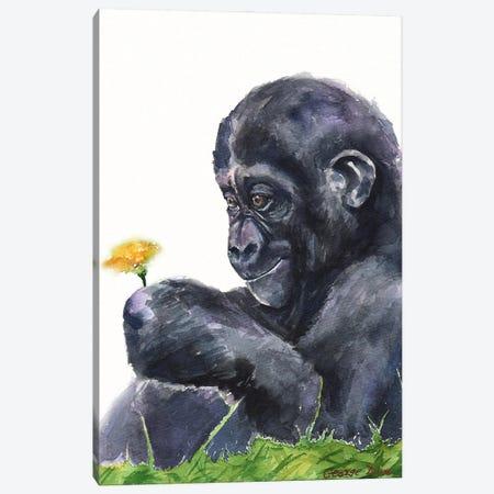 Gorilla baby Canvas Print #GDY282} by George Dyachenko Canvas Wall Art
