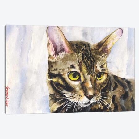 Little Kitty Canvas Print #GDY284} by George Dyachenko Canvas Print