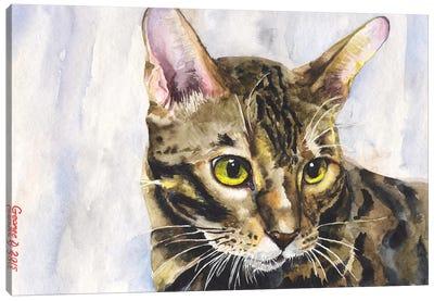 Little Kitty Canvas Art Print