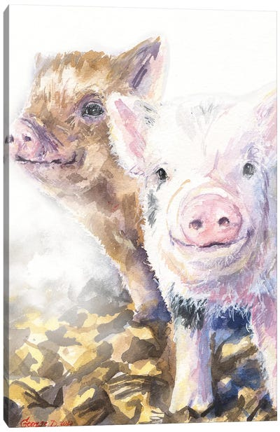 Pig friends Canvas Art Print
