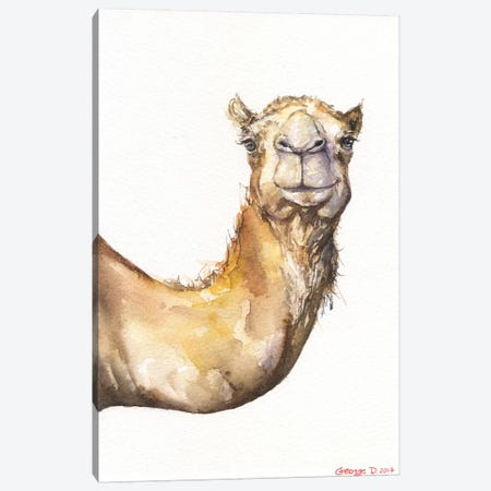 Camel Canvas Print #GDY32} by George Dyachenko Canvas Wall Art