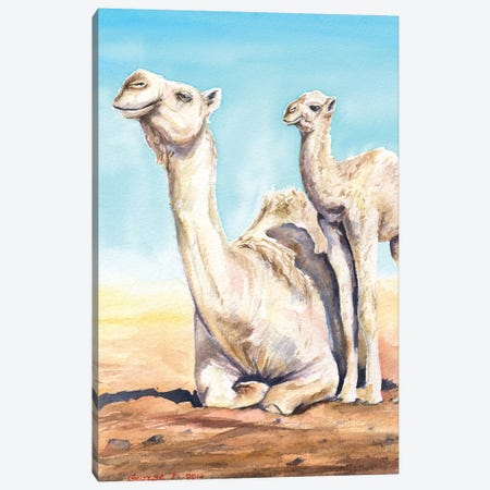 Camel & Calf Canvas Print #GDY33} by George Dyachenko Canvas Artwork