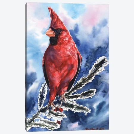 Cardinal Canvas Print #GDY35} by George Dyachenko Canvas Print