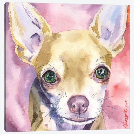 Chihuahua Canvas Print #GDY37} by George Dyachenko Canvas Print