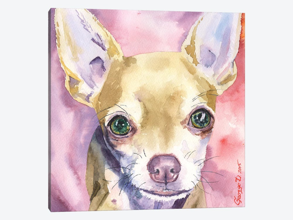 Chihuahua by George Dyachenko 1-piece Canvas Wall Art