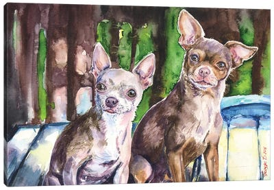 Chihuahuas Canvas Art Print