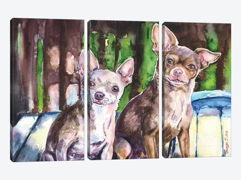 Chihuahuas by George Dyachenko 3-piece Art Print