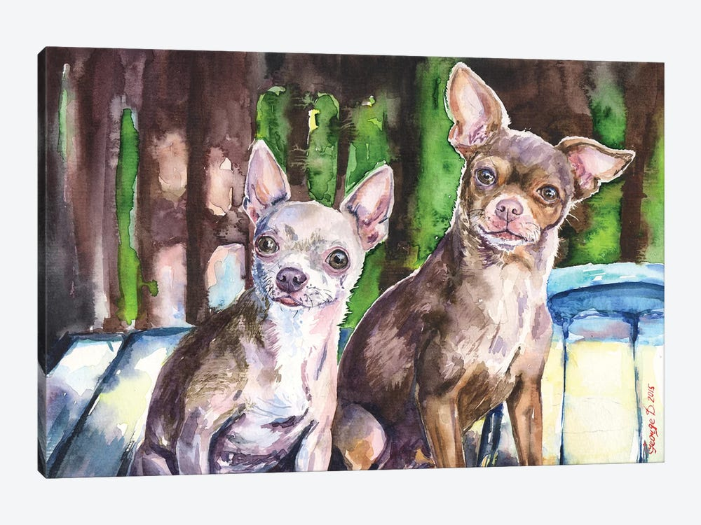 Chihuahuas by George Dyachenko 1-piece Canvas Print