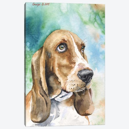 Basset I Canvas Print #GDY3} by George Dyachenko Canvas Artwork