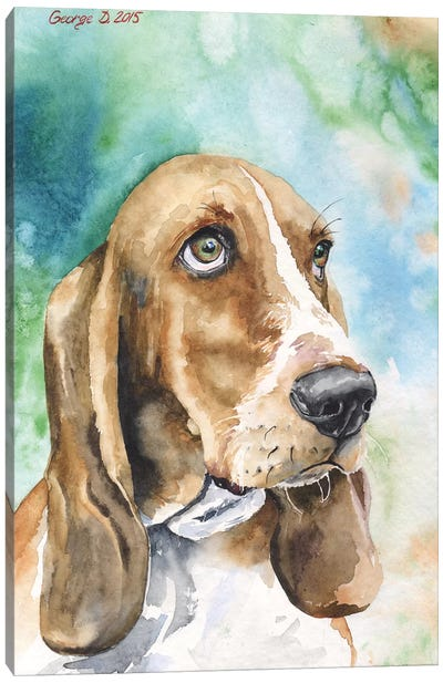 Basset I Canvas Art Print