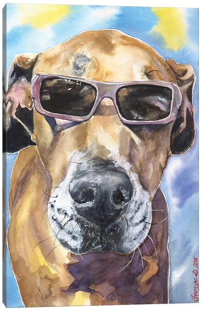 Cool Great Dane Canvas Art Print