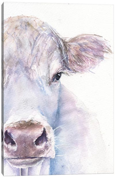 Cow Canvas Art Print