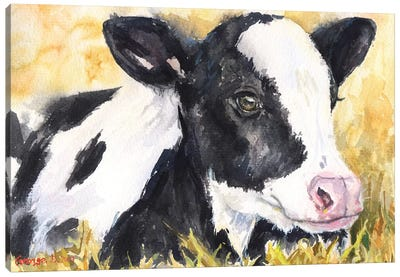 Cow Baby Canvas Art Print
