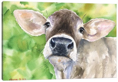 Cow In Nature Canvas Art Print