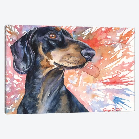 Dachshund Canvas Print #GDY46} by George Dyachenko Canvas Art