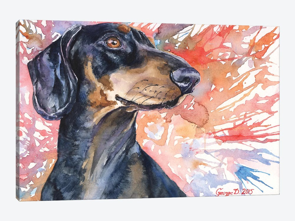 Dachshund by George Dyachenko 1-piece Canvas Art