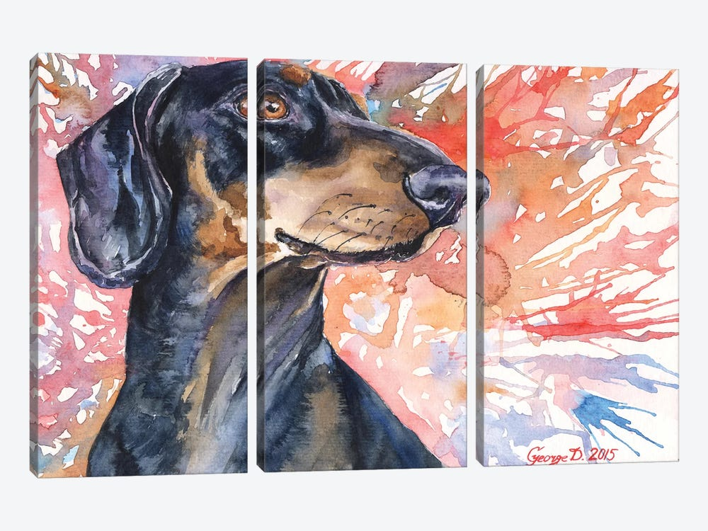 Dachshund by George Dyachenko 3-piece Canvas Wall Art