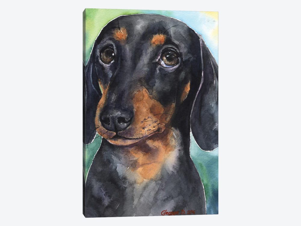 Dachshund Puppy by George Dyachenko 1-piece Art Print