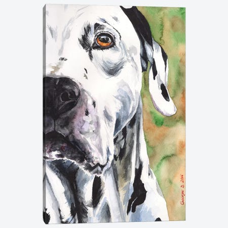 Dalmatian Canvas Print #GDY48} by George Dyachenko Canvas Art Print