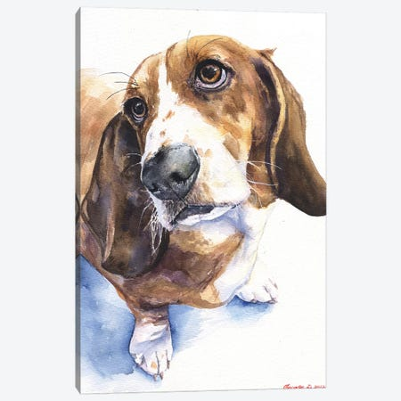 Basset II Canvas Print #GDY4} by George Dyachenko Canvas Print