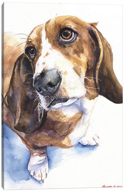 Basset II Canvas Art Print