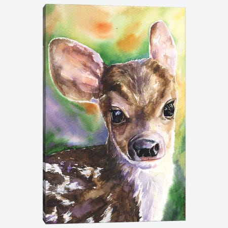 Deer Fawn Canvas Print #GDY50} by George Dyachenko Canvas Wall Art