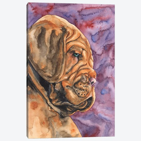 Dogue de Bordeaux Puppy Canvas Print #GDY52} by George Dyachenko Canvas Art