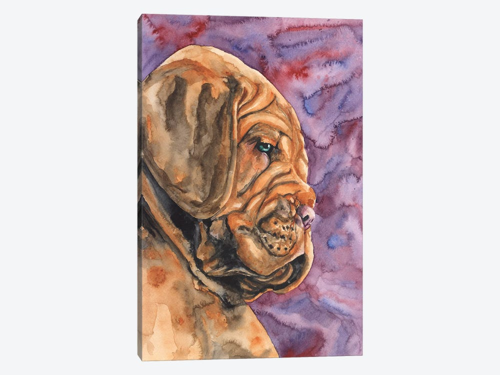 Dogue de Bordeaux Puppy by George Dyachenko 1-piece Canvas Print