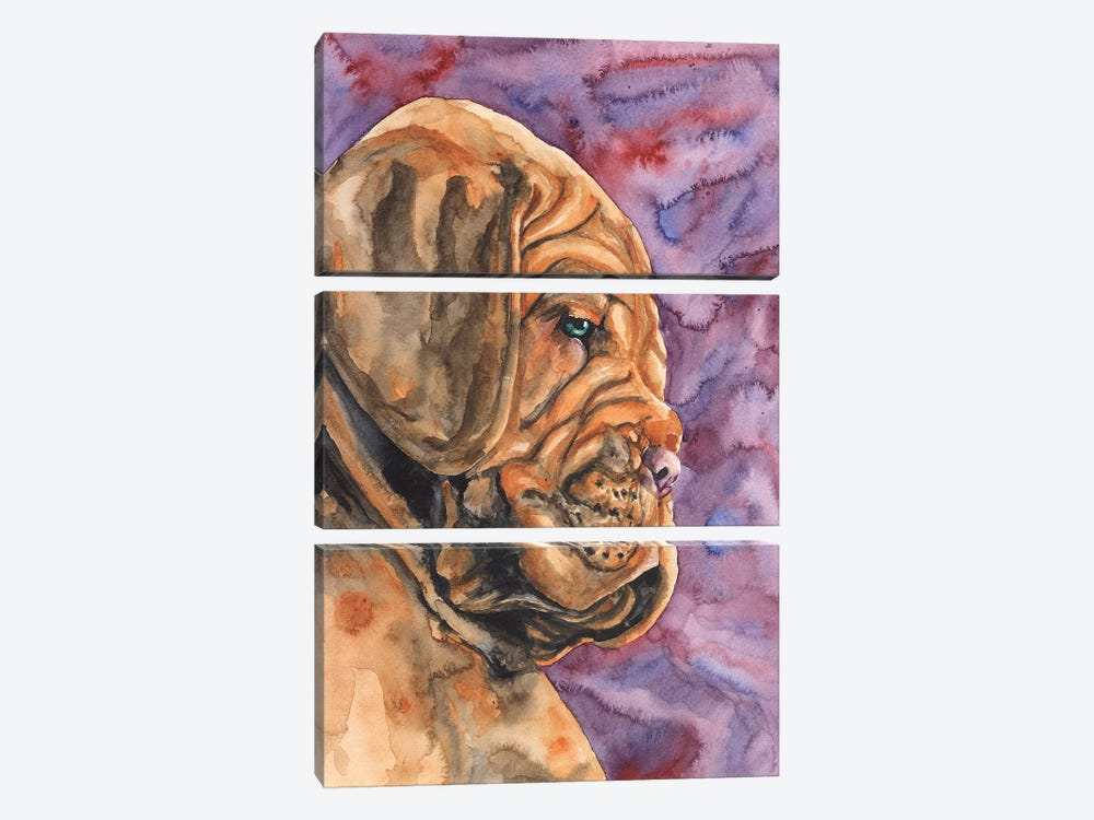 Dogue de Bordeaux Puppy by George Dyachenko 3-piece Canvas Print