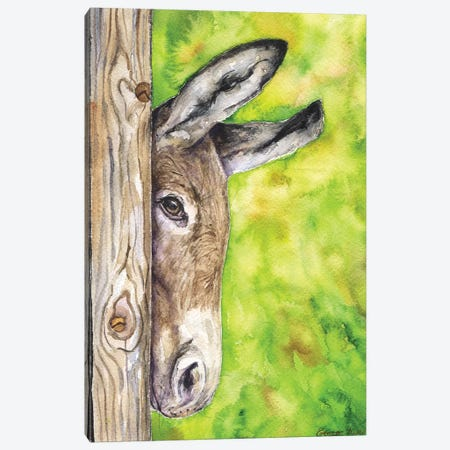 Donkey In Nature Canvas Print #GDY53} by George Dyachenko Canvas Artwork