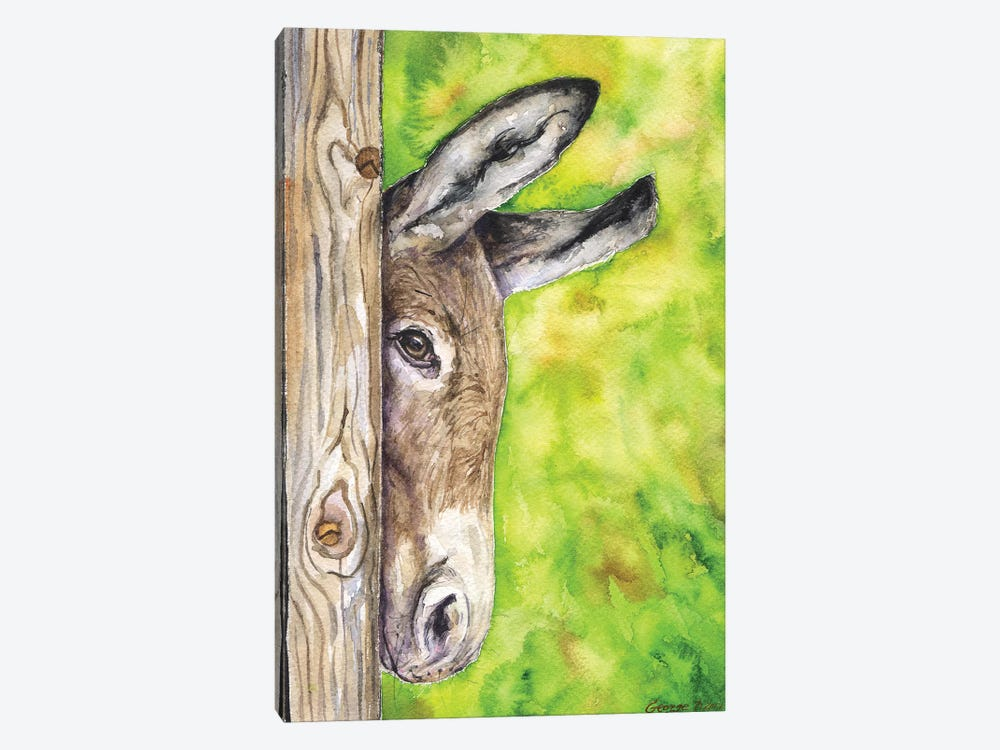 Donkey In Nature by George Dyachenko 1-piece Canvas Wall Art