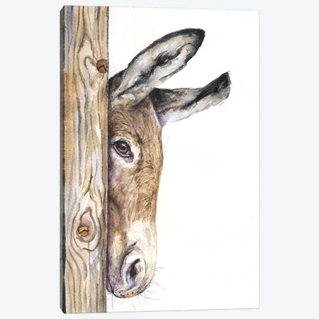 Donkey On White Canvas Print #GDY54} by George Dyachenko Canvas Print